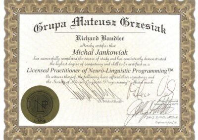 Międzynarodowy Praktyk NLP, 2008