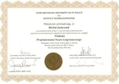 Praktyk NLP, 2004
